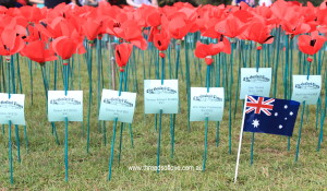Rememberance day australia